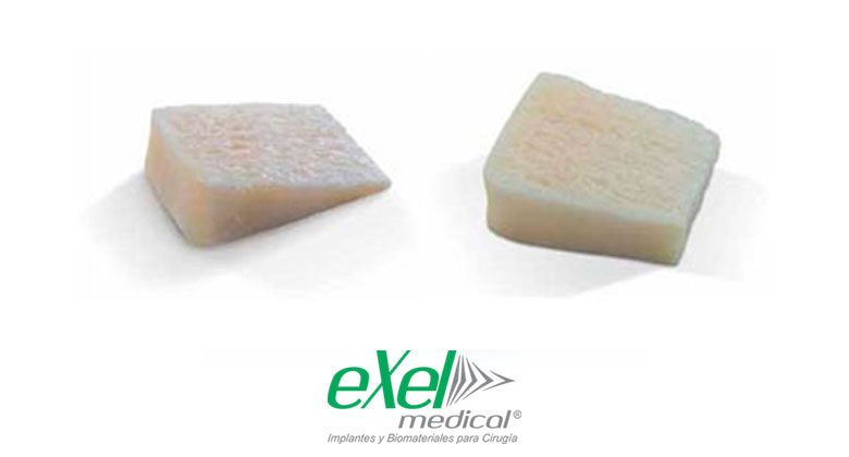 exelmedical-sustitutos-cunas-bicorticales